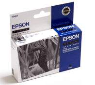 Картридж струйный Epson C13T04814010 черный (black) для Epson Stylus Photo R200/220/300/320/340/RX500/RX600/620/640